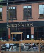 Burgundy-Lion