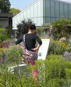 Toronto-Botanical-Garden